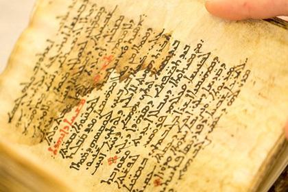 Восстановлен уничтоженный христианами древний медицинский текст