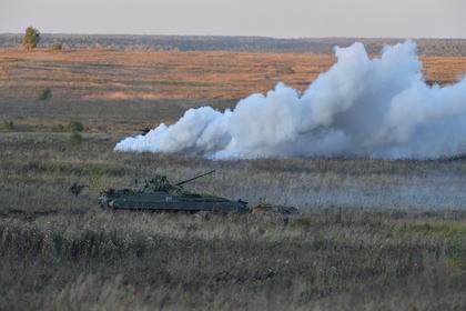 Украинским военным закупили смесь для окуривания деревьев вместо дымовых завес