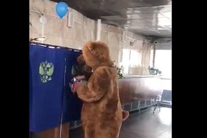 В Бурятии на выборы пришли панда и бурый медведь