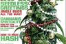 High Times поздравляет читателей с наступающим Новым годом.
