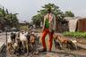 Фотожурналист-фрилансер Тарик Заиди получил второй приз в номинации «Портретная история» за серию фотографий «Саперы Браззавиля». <br> <br> Осознанное копирование европейской моды со времен колонизированной Африки является способом поднять свой авторитет в обществе. Саперы — модники из африканского государства Конго. Эта особая субкультура денди имеет свой жаргон и символику, определяет внешний вид и даже походку членов сообщества. При общей экстравагантности все саперы — убежденные пацифисты, сосредоточенные на высказывании своего отношения к миру через костюм и аксессуары.