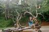 Член индонезийского коллектива фотографов Arka Project Мухаммад Фадли занял третье место в категории «Портретная история» со своей серией «Мятежные всадники».  <br> <br> Этот беспечный ездок не забыл украсить транспортное средство национальным флагом Индонезии.