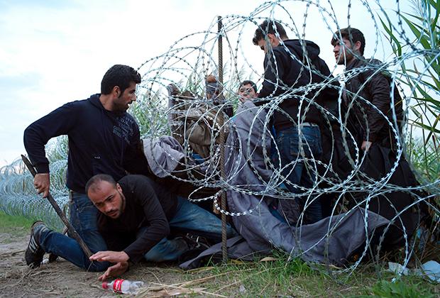 Сирийские беженцы пролезают под венгерскими пограничными заграждениями