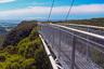 Популярное австралийское  развлечение — прогулки по верхушкам деревьев. Один из таких смотровых маршрутов — Illawarra Fly, металлическая конструкция на 25-метровой высоте. Смотреть можно как на тропический лес, так и на тихоокеанское побережье. Входит в десятку лучших смотровых площадок мира по версии Lonely Planet.