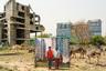 Француз Крестани оказался в Гургаоне по программе студенческого обмена в 19 лет, он изучал урбанизм и политологию. Его поразили оазисы роскоши, точечно разбросанные по неиспользуемой территории, а главное — границы, которые создавались из-за них в обществе. Это и вдохновило его заняться фотографией.