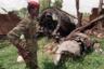 Поворотным моментом стало 6 апреля 1994 года. Тогда самолет, на борту которого находились президент Руанды Жювеналь Хабиаримана и его коллега из Бурунди, был сбит над столицей, Кигали. Военные обвинили в этом РПФ и призвали население к расправам и полному уничтожению тутси. На ком действительно лежит ответственность за сбитый самолет, неизвестно до сих пор.