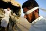 Американцы во время вторжения 2003 года задерживают сторонников Саддама Хусейна