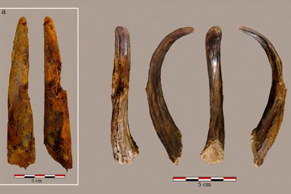 Доказано наличие сложного мышления у неандертальцев