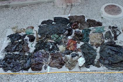 Кашалот проглотил 30 килограммов мусора и умер