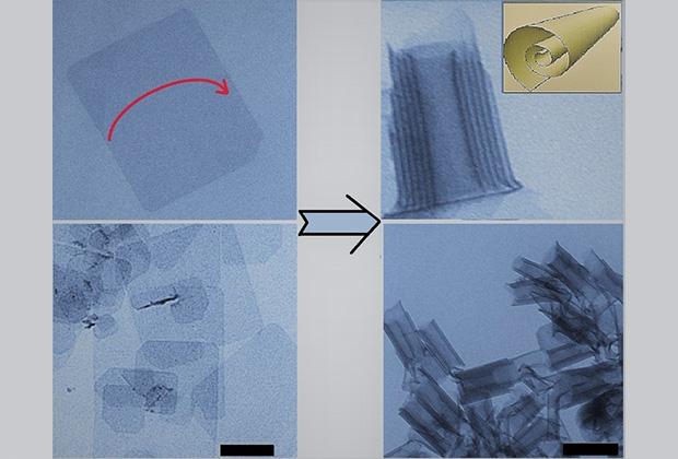 Изображения просвечивающей электронной микроскопии для двумерных листов теллурида кадмия. На левой панели — исходные листы с плоской формой, на правой — листы после сворачивания в свёртки. В правом верхнем углу дано схематичное изображение свёрнутого листа.