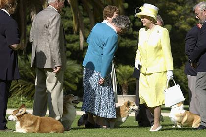 Усыплен последний корги королевы Великобритании