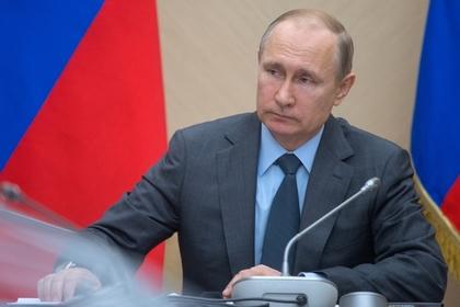 Путин подписал закон о свободном сборе валежника