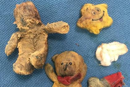 «Раковая опухоль» сенбернара оказалась мягкими игрушками