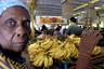 Продуктовые магазины на Кубе по большей части пустые. При этом они делятся на два типа: те, в которые ходит большинство кубинцев и где товаров крайне мало, и магазины для людей с деньгами, которые готовы переплачивать за редкие продукты.