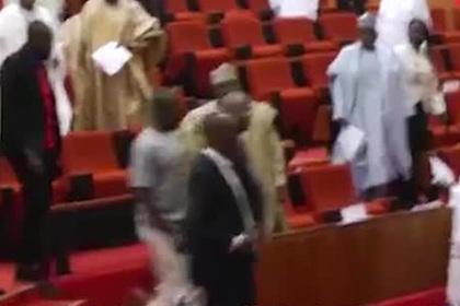 Парламент Нигерии вероломно лишили символа власти
