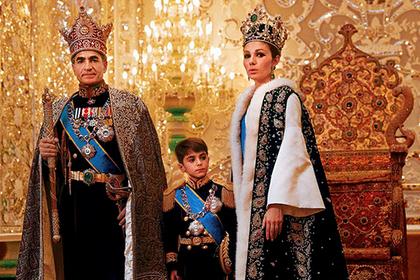 Персидские киски
