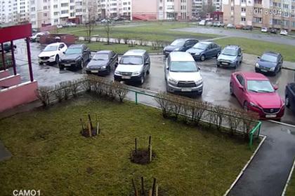 Россиянин выбросил кота с девятого этажа на соседский Infiniti