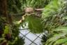 Уникальный тропический мир приключений «Гондвана» в Лейпцигском зоопарке. Здесь около 40 видов экзотических животных и более 500 видов растений. С первого шага ощущаешь себя в джунглях.