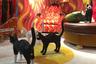 Светильники-коты в натуральную величину не столько практичны, сколько забавны: светятся у них только глаза. А заодно сверкают позолотой и расположенные под хвостами фигур неоспоримые доказательства котовьей мужественности (и хулиганского настроения дизайнеров Studio Job, которые придумали котов для Seletti).