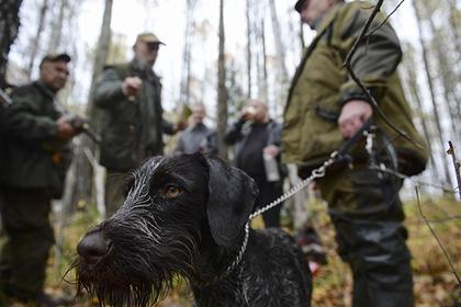 Власти Подмосковья обеспокоились поведением охотников