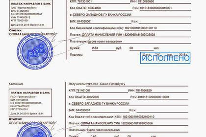 Основатель Telegram Павел Дуров не погасил задолженность за квартиру в 4 рубля 23 копейки