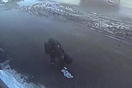 Тамбовский медвежатник рассыпал украденные миллионы и попал на видео