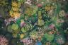 Австралиец Бо Ле побывал на Аделаидских холмах со своим дроном и сфотографировал их с воздуха. «Это местечко всегда было моим любимым. Оно похоже на волшебный сад из сказок», — говорит он.