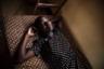 16-летняя Паскалия получила кров в монашеском приюте в Танзании. Когда мать девушки умерла, отец пытался заставить ее сделать обрезание и выйти замуж. Пасхалии удалось сбежать от калечащей операции на половых органах и детского брака.   <br> <br>  Девушка на снимке выглядит спокойной, задумчивой, немного мечтательной. Намек на улыбку вкупе с печалью в глазах окутывает тайной ее историю и характер. Непростое прошлое Паскалии позволяет увидеть ее на портрете совсем иначе. Именно за эту глубину работа удостоена «Выбора жюри».