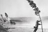 Прохожий держится за дерево — огромные волны у береговой линии Нью-Джерси были вызваны ураганом «Кэрол».