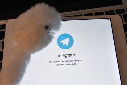 Павел Дуров предупредил о сбое в работе Telegram в Европе