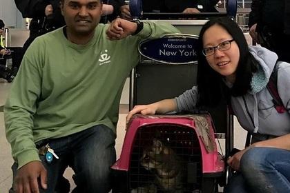 Нуань Тан (справа) с кошкой Пеппер