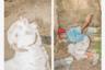 Фотограф Мунем Васиф высоко оценил снимки коллеги: «Грязная противомоскитная сетка, милый поцелуй во дворе, сношающиеся козы, голые плачущие дети, влюбленная пара, злая орущая женщина — все это часть нашей жизни. Его снимки находятся где-то между документалистикой и вымыслом. Иногда они становятся волшебными, но не отрицают при этом реальности».