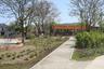 В сквере, который находится в центре жилого района, было много деревьев, но сама территория представляла собой пустырь.