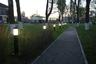 Парк будет дополнительно озеленен — в рамках благоустройства высадят более 600 деревьев и кустарников. Кроме того, в парке снова появится освещение, в том числе декоративное, а также спортивная площадка и открытая сцена.