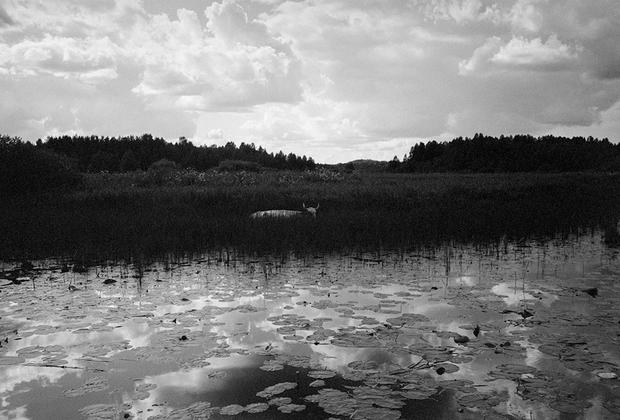 В Колодозеро я впервые приехала летом 2009 года. Я и раньше слышала о том, что где-то в карельской глуши живет необычный священник-панк.