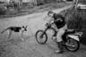 Пашка, парень родом из соседнего села Кривцы, с 2011 по 2016 год жил в Колодозере в доме у Аркадия, и тот был ему вместо матери и отца. У Пашки было непростое детство — пьющие родители, которым не было дела до сына, голод, дурная компания. У Аркадия Пашка отогрелся, помогал по хозяйству, алтарничал, работал на ферме. В 2016-м он поступил в училище на автомеханика, но не окончил его. Сейчас живет в Петрозаводске и в Пудоже.