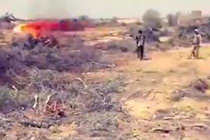 Египетские военные решили сжечь советскими огнеметами кусты с боевиками ИГ