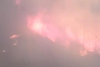 Российский поезд проехал сквозь лесной пожар и попал на видео