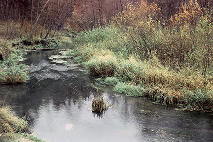 Россияне недооценили лесной ручей и утонули