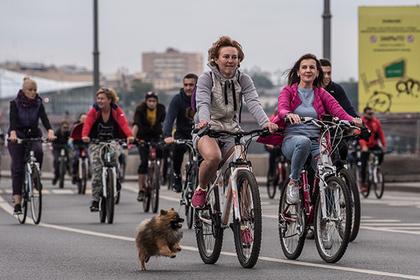 Велосипедистов собрались проверить на знание правил дорожного движения