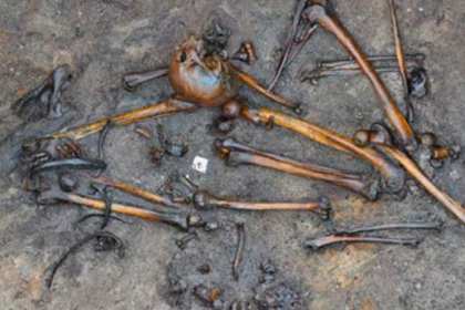 В Дании нашли кости сотни убитых человек