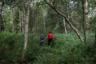 Рая и Юля гуляют в лесу. Они лучшие подруги. Вместе слушают музыку в свободное время, гуляют, делятся проблемами и веселятся.