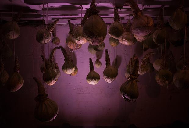 В погребе хранятся выращенные местными огородниками овощи. Жители деревни живут натуральным хозяйством — летом они много работают, чтобы зимой все было в достатке. Помимо этого, сами производят молоко, сыр, творог и продают в соседние деревни.