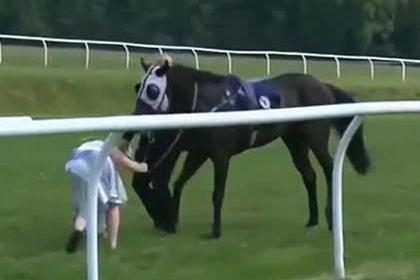 Ведущая остановила коня на скаку в прямом эфире