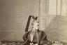 Токугава Акитаке — сводный брат Токугавы Есинобу, последнего сегуна Японии из династии Токугава, который пытался провести реформы в Японии, ориентируясь на Францию. Акитаке посетил Францию в 1867 году в качестве эмиссара и вернулся в Японию, когда Есинобу был уже свергнут.