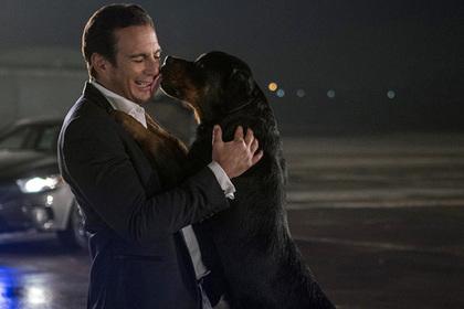 Щупанье собачьих гениталий в детском фильме вызвало скандал