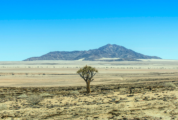 """Молодожены еще не отправились в медовый месяц, однако, как сообщают многие источники, он <a href=""""https://lenta.ru/news/2018/04/18/honneymoon/"""" target=""""_blank"""">будет</a> проходить в необычном для романтической поездки месте: в кемпинге, окруженном песками Намибии."""