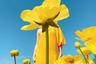 Яркое калифорнийское солнце и желтое платье сестры вдохновило Маргарет Бьенерт сделать максимально весеннюю фотографию.