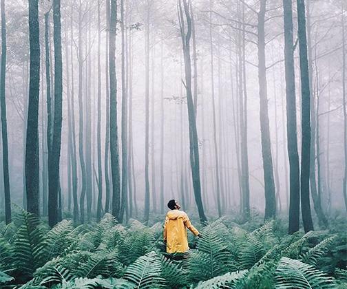 Российский блогер Сергей Сухов ведет Instagram об идеальной жизни: элитные отели, дорогие костюмы, вкусная еда. Но, кажется, даже от роскоши иногда хочется просто убежать в лес.