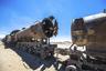Большинство паровозов были разворованы еще в 1940-е годы. Помимо банального желания заработать, сработал и фактор ненависти — местные жители регулярно выступали против строительства на солончаке новых железных дорог.